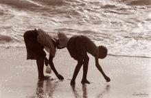©1987 Saint Louis au Sénégal. Dans les reflets et reflux de la vague sortent les sebeths, petits coquillages en triangle. Les doigts agiles n'ont plus qu'à les cueillir...