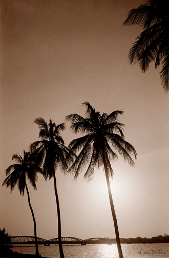 ©1988 Saint-louis au Sénégal. Entre air et terre Entre fleuve et mer Ndar est mariée aux éléments D'où la qualité des moments